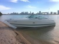 Motorboat Formula 280Ss for rental