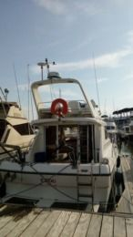 Charter Motorboat Princess Vedette 31 Royan
