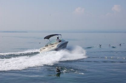 Rental Motorboat Sea Ray 240 Castelletto