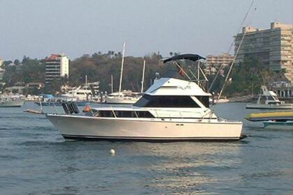 Rental Motorboat Bertram 40 Acapulco