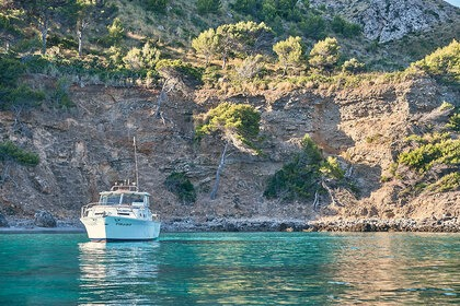 Miete Motorboot Charter Mallorca Chris Craft Commander 31 Can Picafort