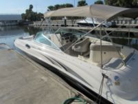 Motorboat Sea Ray Sundeck