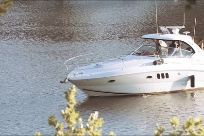 Verhuur Motorboot Sea Ray 38 Sundancer Woodbridge