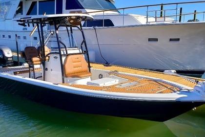 Hire Motorboat Seapro 248 Charleston