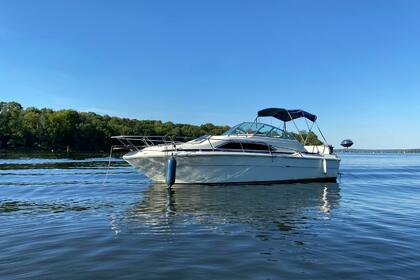 Hire Motorboat Sea Ray 245 sundancer Berlin