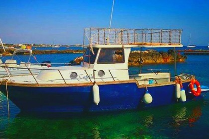 Rental Motorboat Tourboat 8m Favignana