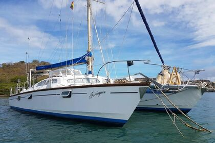 Charter Catamaran MacAlpine Downey Apache 40ft Grenada