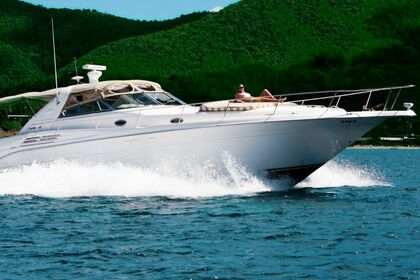 Hire Motorboat Sea Ray Express Cruiser Charlotte Amalie