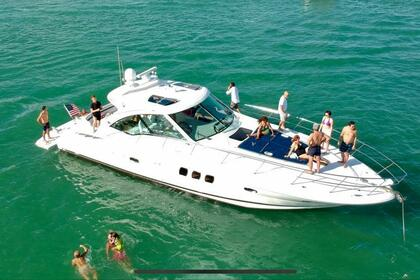 Miete Motorboot Sea Ray 480 Sundancer Miami Beach