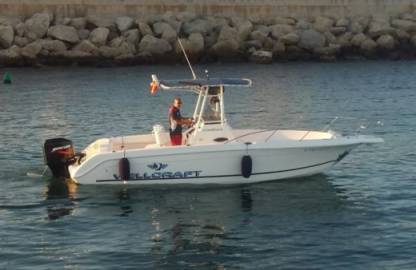 Rental Motorboat Wellcraft X730 'cronos' (8P) Can Pastilla