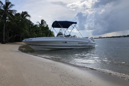 Rental Motorboat Wellcraft 180 Miami