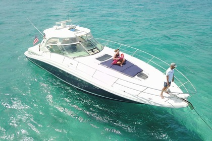 Charter Motorboat SEA RAY 450 Sundancer Miami