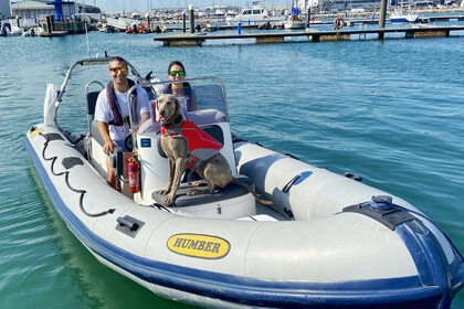 Rental RIB Humber Destroyer 6.0 Weymouth