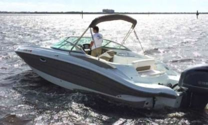 Rental Motorboat South Wind 26' Miami