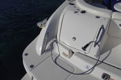 Verhuur Motorboot Sea Ray 295 Bow Rider Ibiza