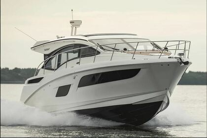 Rental Motorboat Sea Ray Sundancer 43 Newport Beach