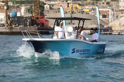 Hire Motorboat White Shark 285 Viareggio