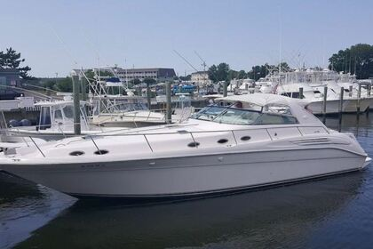 Charter Motorboat Sea Ray Sundancer 450 Tulum