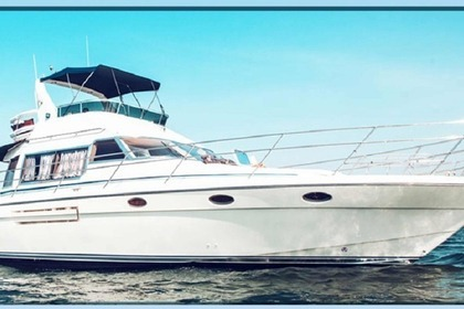 Rental Motorboat Westerly Wolf 46 Fly Chalkidiki