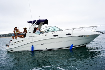 Hire Motorboat Sea Ray Sundancer Marina del Rey