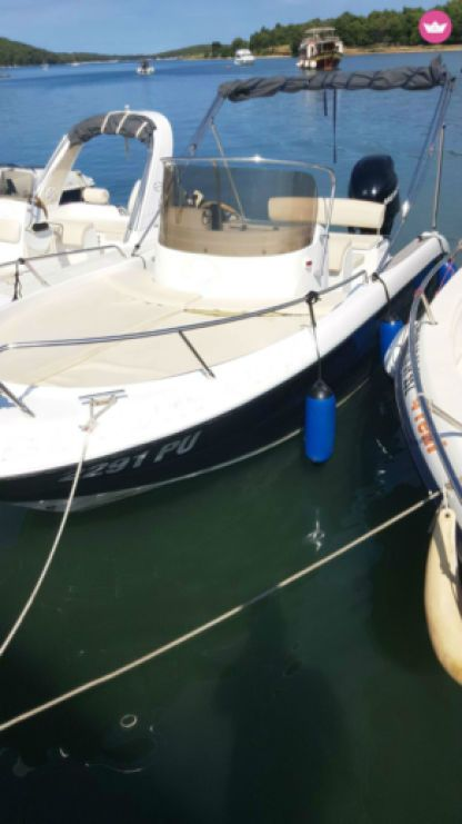 Charter Motorboat Fisher 20 Medulin