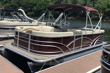 Hire Motorboat Sylvan Mirage 8520 Greentown