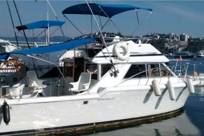 Rental Motorboat Custom 30ft Motor Boat Acapulco
