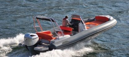 Charter RIB Marlin Marlin 790 Pro Gray Orange Vrsar