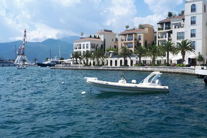 Location Semi-rigide Tiger Marine Topline 750 Tivat