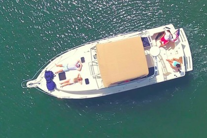 Hire Motorboat Mainship 34 ft New England style yacht Charleston