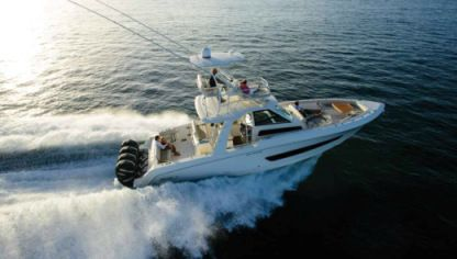 Rental Motorboat Boston Whaler 42 Naples