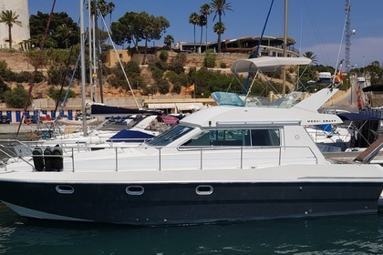 Rental Motorboat MOCHI CRAFT Fly 42 Torrevieja