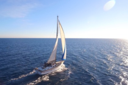 Charter Sailboat PRICE YACHTS MC ARTHUR 45 Ibiza