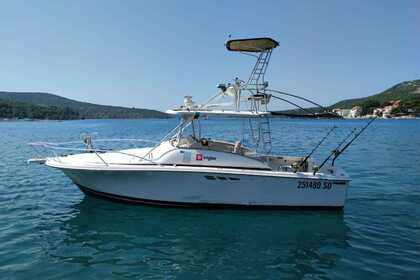 Charter Motorboat Luhrs 29 Tournament Dubrovnik