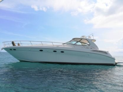 Rental Motorboat Sea Ray 510 Sundancer Vieques