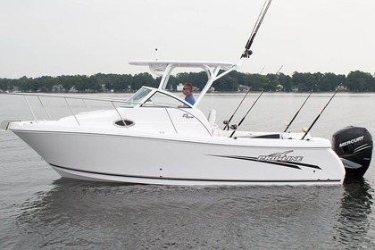 Charter Motorboat Proline 30 Galveston