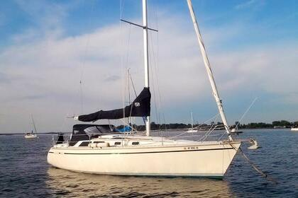 Rental Sailboat Monohull 36 St. Augustine