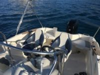 Quicksilver 635 Commander in Trogir for hire