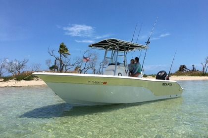Rental Motorboat Sea Fox 260 West Palm Beach