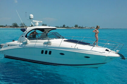 Miete Motorboot Sea Ray 380 Miami Beach