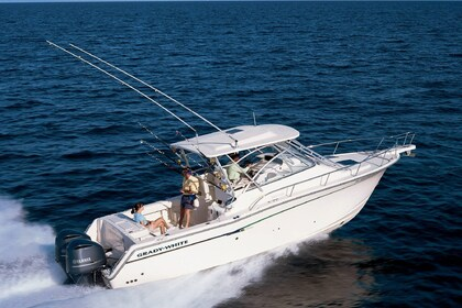 Charter Motorboat Grady White 32 Galveston