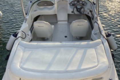 Rental Motorboat Sea Ray 175 Sport Marbella