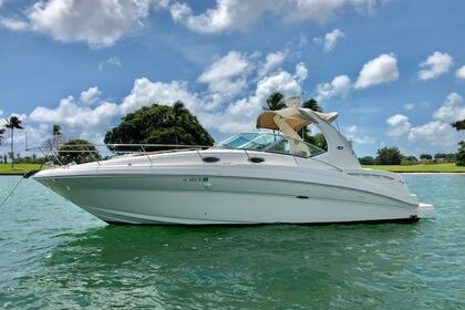 Charter Motorboat Sea Ray Sundancer 320 Cruiser Yacht Miami