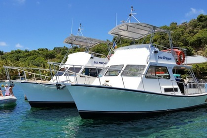 Charter Motorboat Custom Newton British Virgin Islands