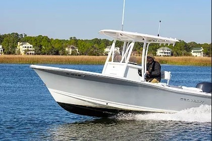 Aluguel Lancha Sea Hunt Center Console Boat 22  Hilton Head Island