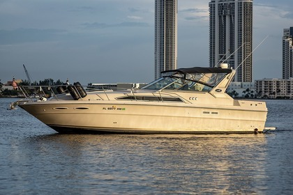 Miete Motorboot Sea Ray 36' sundancer Miami Beach