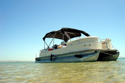 Hire Motorboat Patoon Sunchaser Ol Olhão