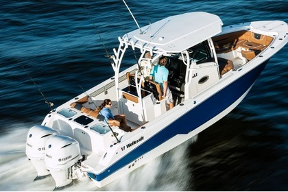 Rental Motorboat Wellcraft 302 Fisherman U.S. Virgin Islands