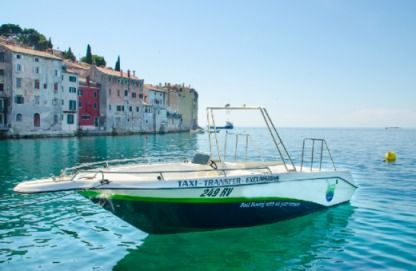 Charter Motorboat Sea Ray 27 Open Rovinj
