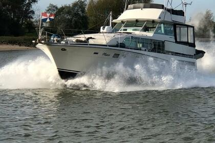 Hire Motorboat BERTRAM 46.6 Veluwemeer